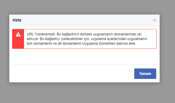 facebook-domain-hatasi