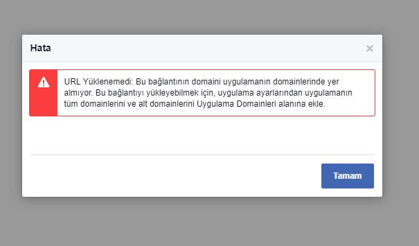 facebook-domain-hatasi